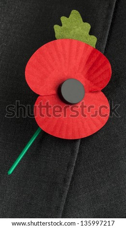 Remembrance day poppy images Free Photos for free download