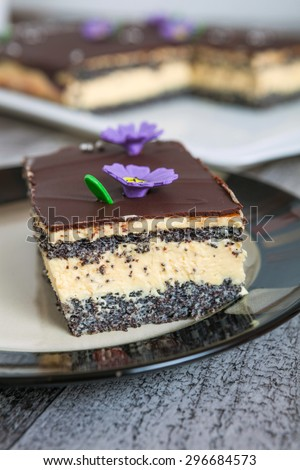 Poppy Seed Cake Slice - stock photo