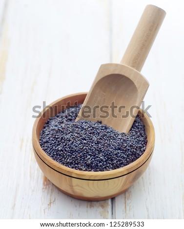 poppy seeds - stock photo