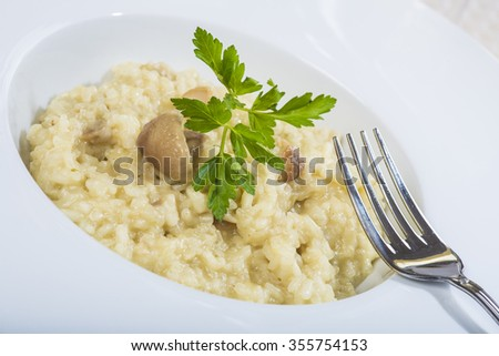 Porcini mushroom risotto with parmesan cheese decorated with parsley - stock photo