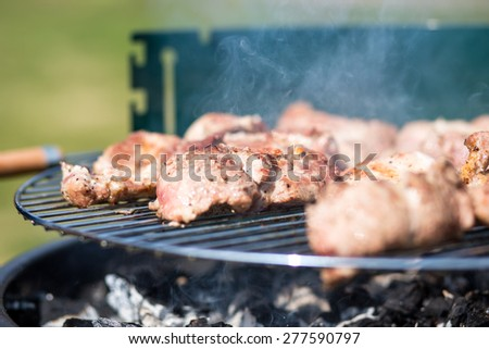 Pork Meat Chop On The Barbecue Grill Outdoors - stock photo