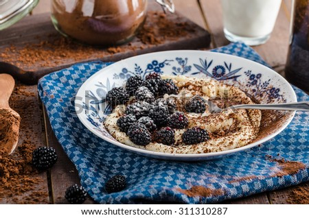 Porridge - czech original with berries, sugar and cocoa powder - stock photo