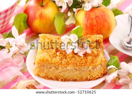 portion of apple shortcake with crumble and cinnamon - stock photo