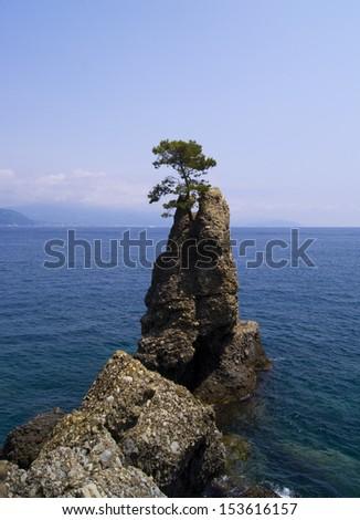 Portofino natural regional park. Liguria, Italy - stock photo