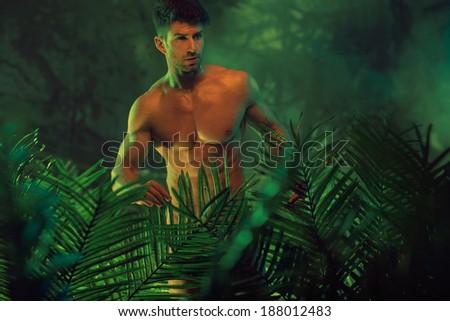 Portrait of a beautiful shirtless man - stock photo