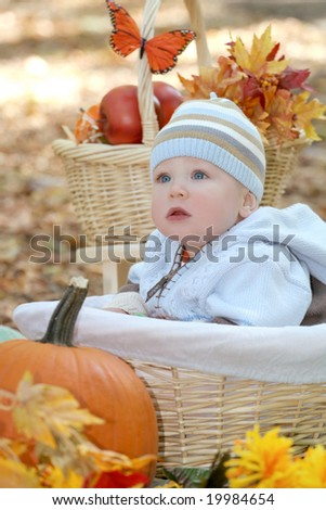 Portrait of a blue eyed baby boy in a basket outdoors, surrounded by fall leaves and flowers, in a park setting - stock photo