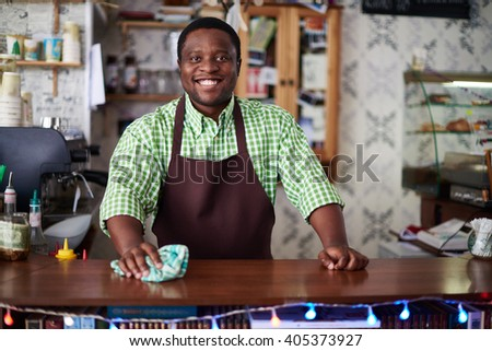 Portrait of a cheerful man working at bar counter - stock photo