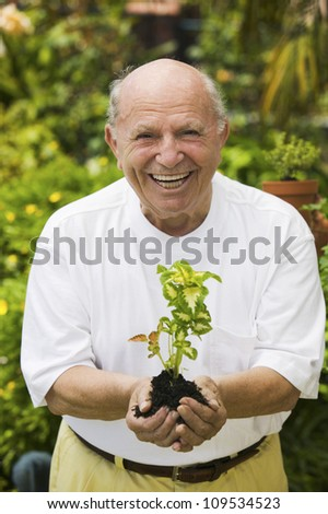 Portrait of a cheerful senior man holding a plant in garden - stock photo