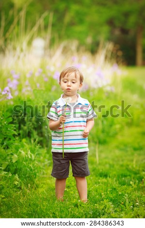Portrait of a cute adorable little boy toddler standing in the forest field meadow with dandelion flowers in his hands and blowing them on a bright summer day, funny card with copy space for text - stock photo