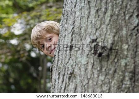 Portrait of a cute little boy peeking from behind tree - stock photo