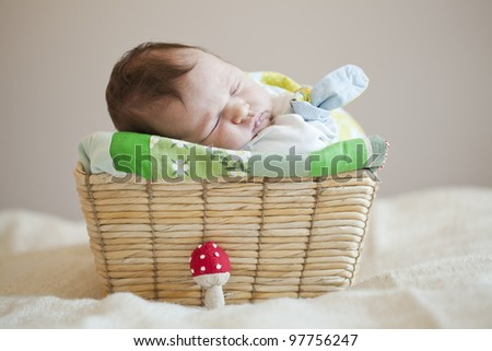Portrait of a cute newborn baby girl sleeping in a basket - stock photo