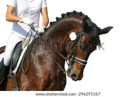 Portrait of a dressage horse during the test. - stock photo