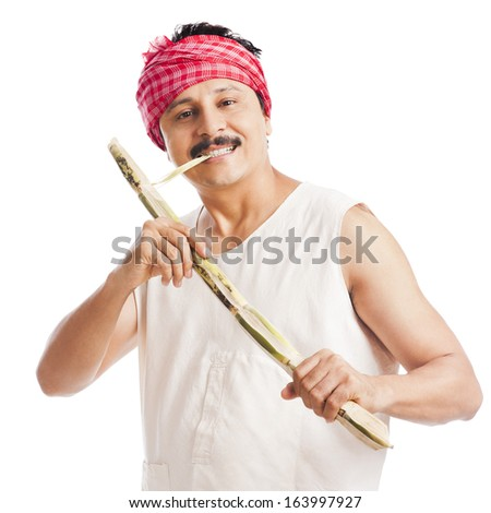 Portrait of a farmer eating sugar cane and smiling - stock photo