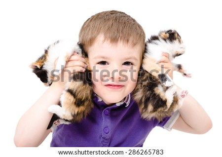 Portrait of a happy boy playing with kittens isolated on white background - stock photo