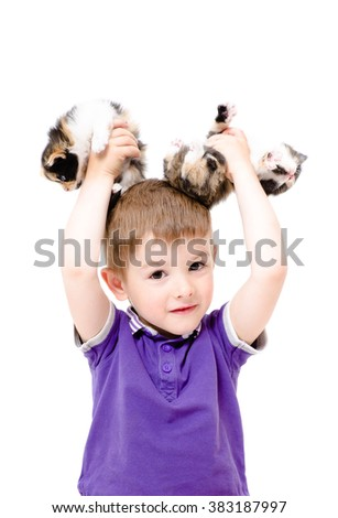 Portrait of a happy boy with kittens in the hands isolated on white background - stock photo