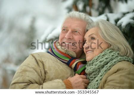 Portrait of a happy senior couple at winter outdoors - stock photo