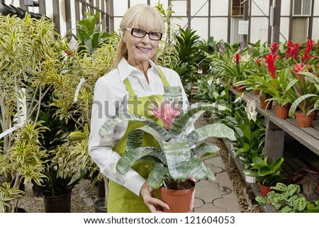 Portrait of a middle-aged gardener holding pot plant in garden center - stock photo