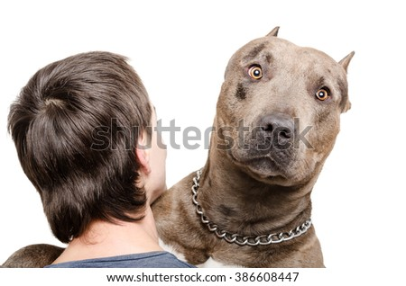 Portrait of a pit bull on the shoulder of a young man isolated on white background - stock photo