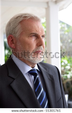 Portrait of a senior man in suit - stock photo