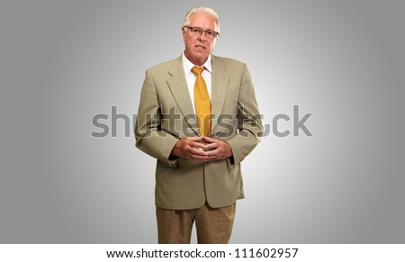 Portrait Of A Senior Man On Grey Background - stock photo