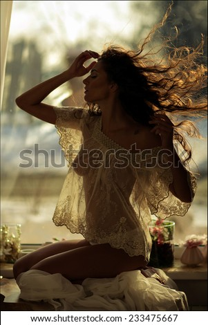 portrait of a sexy sensual kinky girl in transparent clothes on the window background - stock photo