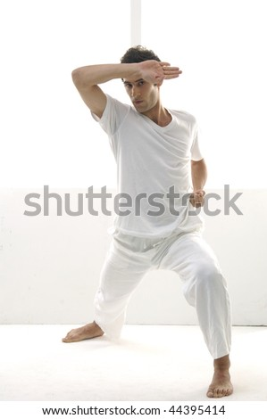 Portrait of a styled professional model does taekwondo - stock photo