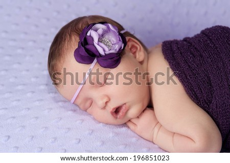 Portrait of a 2 week old sleeping newborn baby girl. She is wearing a purple and lavender flower headband and sleeping on a lavender colored blanket.  - stock photo