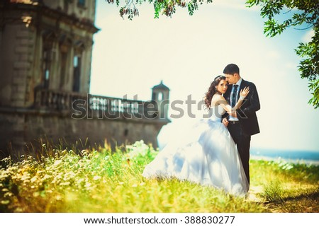 portrait of a young wedding couple - stock photo