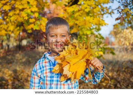 Portrait of Adorable cute boy with autumn leaves in the beautiful park - stock photo