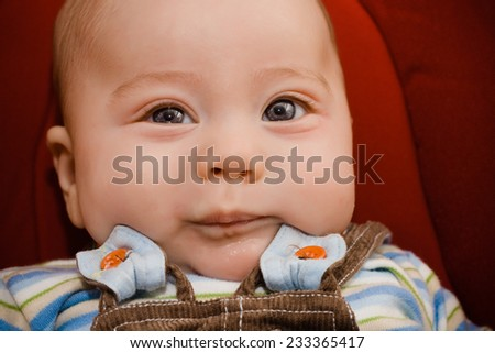 portrait of beautiful baby sitting in a hammock - stock photo