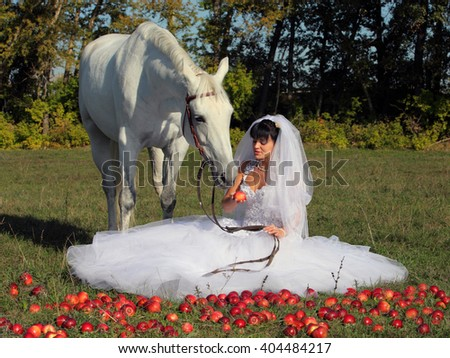 Portrait of beautiful bride with white horse    - stock photo