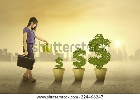 Portrait of businesswoman watering the money trees in the morning to keep the growth - stock photo