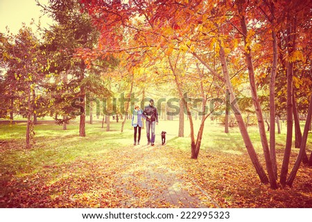 Portrait of couple with dog walking together autumn fall season - stock photo