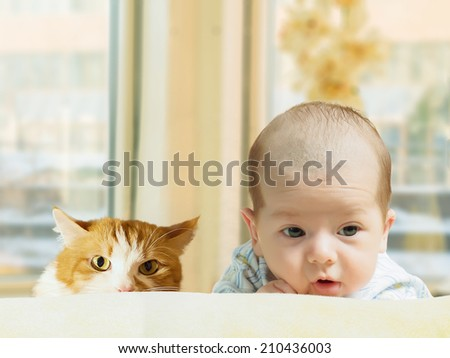 Portrait of face funny caucasian newborn toddler baby boy with red cat at home - stock photo