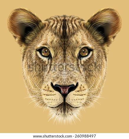 Portrait of Lioness. African big cat. - stock photo