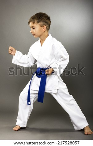 Portrait of little boy training karate isolated on gray background - stock photo