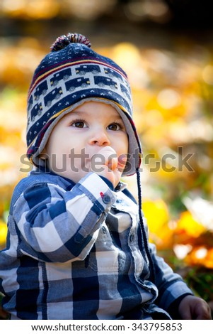 Portrait of 8 months old baby boy enjoying a fall day in the park between trees and leaves. - stock photo