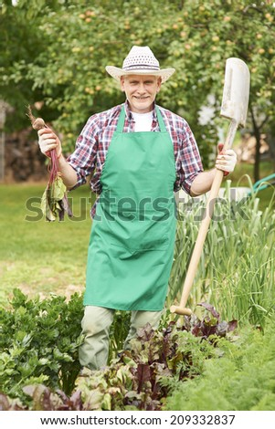 Portrait of proud farmer with ripe beet  - stock photo