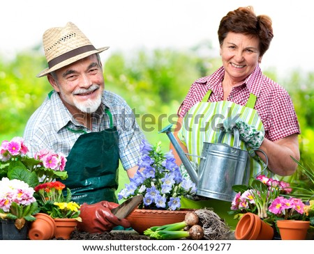 Portrait of senior couple in the flower garden - stock photo