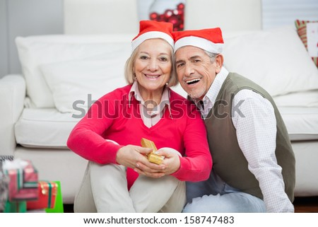 Portrait of senior couple wearing Santa hats smiling together at home - stock photo