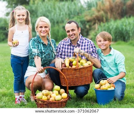 Portrait of smiling adult family harvesting apples in summer garden - stock photo