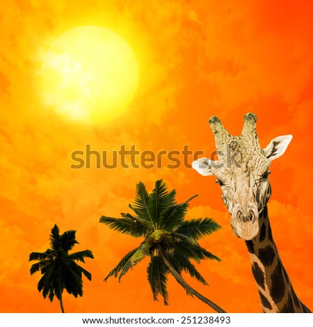 Portrait of surprised giraffe on tropical background - stock photo