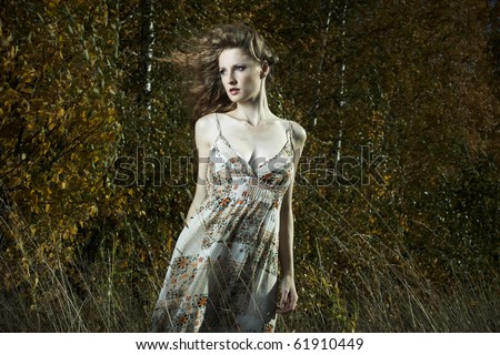 Portrait of the beautiful woman in wood - stock photo