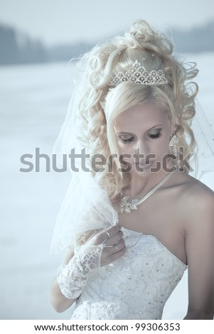 Portrait of the young beautiful bride.  Wedding portrait - stock photo