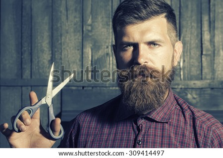 Portrait of unshaven man in violet checkered shirt with long beard and handlebar moustache holding sharp scissors looking forward standing on wooden wall background, horizontal picture - stock photo