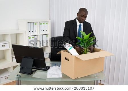 Portrait Of Young Businessman Packing Plant And Folders In Cardboard Box - stock photo