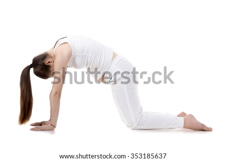Portrait of young pregnant fitness model in sportswear doing yoga or pilates training, Cat Pose, Marjaryasana, asana for flexible spine and shoulders, often paired with Cow Posture, studio, isolated - stock photo