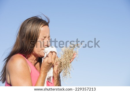 Portrait stressed mature woman suffering from seasonal hay fever allergy, holding bunch of dry straw grass, sneezing into handkerchief tissue, blue sky as background and copy space. - stock photo