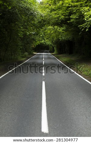 Portrait view of an empty country lane with white line markings surrounded by forest trees - stock photo