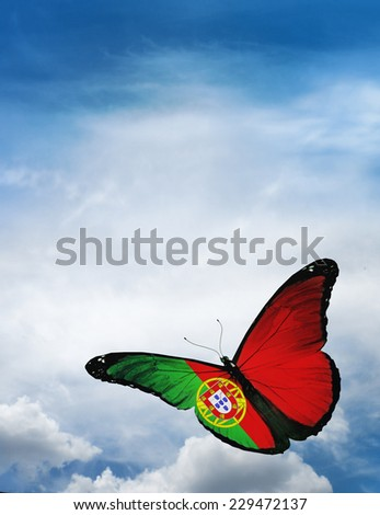 Portugal flag butterfly flying on sky background - stock photo